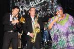 bluesfestival-2013-3-kopier