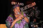 bluesfestival-2013-4-kopier
